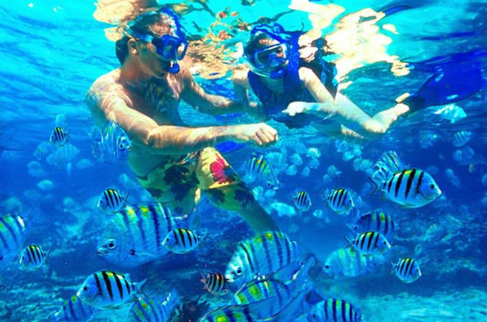 芭东海滩浮潜