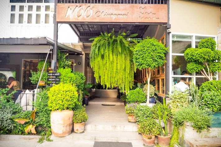 Woo Cafe & Art Gallery & Lifestyle Shop