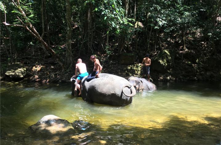 象岛大象玩乐