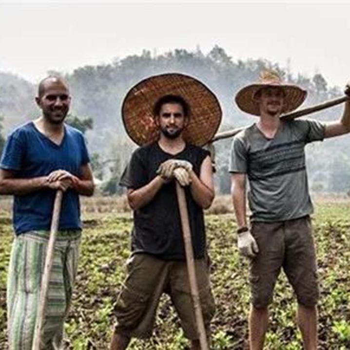 清迈Mindful Farm农场当义工,是什么体验?