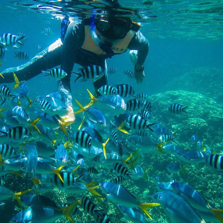 探索泰国如世外桃源般的苏林群岛