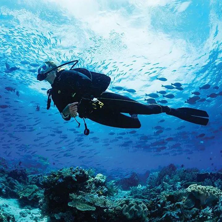 泰国斯米兰群岛度假全攻略