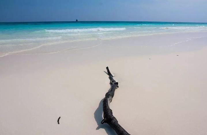张继科景甜约会普吉岛海滩
