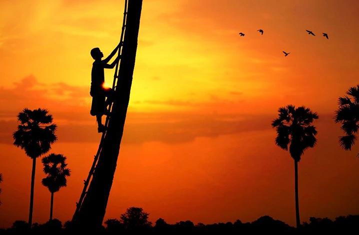 这样安静的大城,古都、废墟、菩提树、绝美日落、拍大片