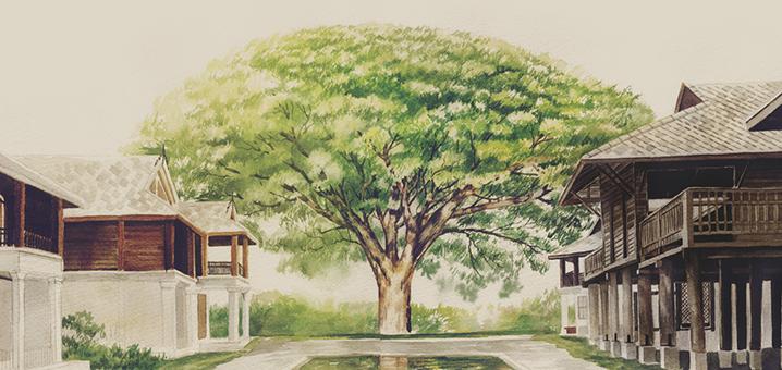 清迈Na Nirand度假酒店,百年雨树下的宁静之行