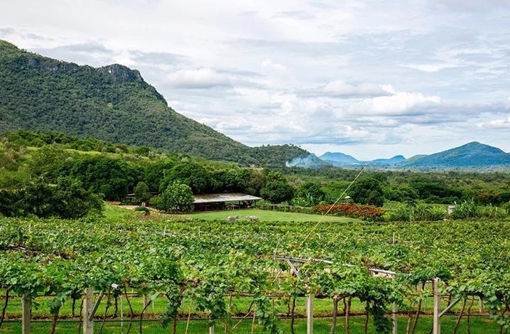 曼谷小众景点仙蓬旅游攻略