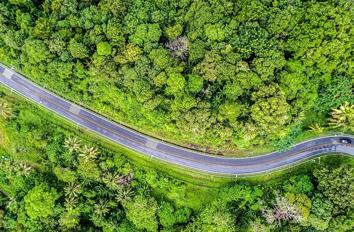 泰国交通规则