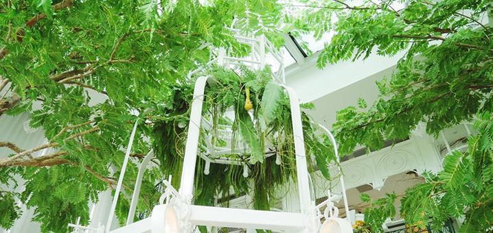 曼谷ORGANIKA HOUSE餐厅,吃午餐都是精致又有品味的公主