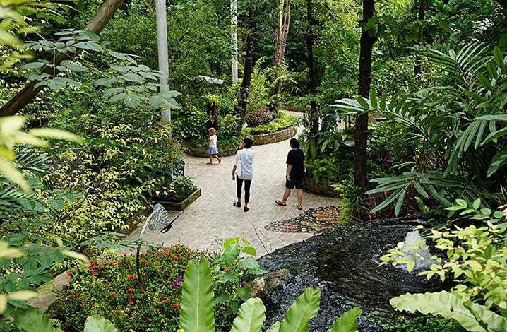 曼谷蝴蝶园与昆虫馆(Bangkok Butterfly Garden and Insectarium)