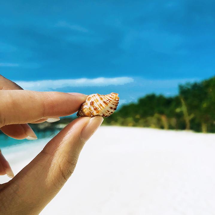 泰国珊瑚岛,浮潜的最佳之地