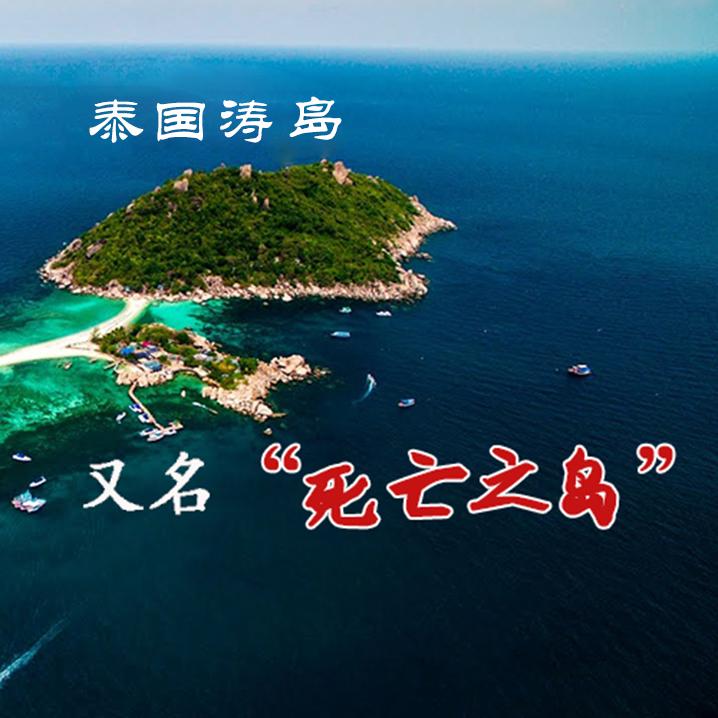 游客相继死亡,涛岛究竟隐藏了哪些秘密