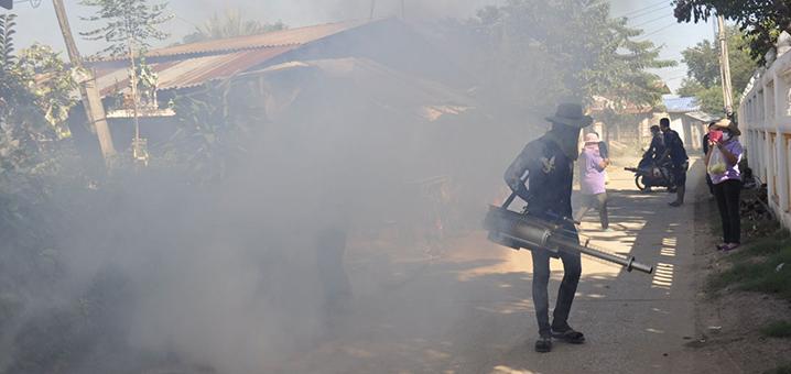 泰国登革热疫情紧急科普,远不是你看到的那样!