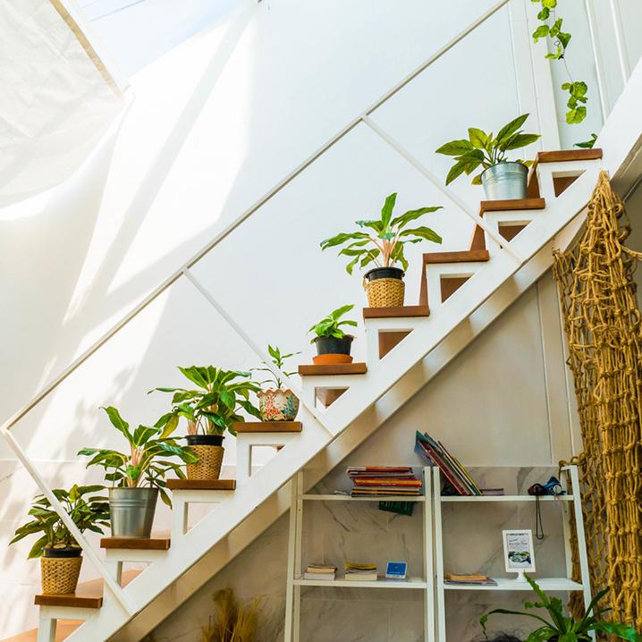 曼谷Wie immer Bangkok咖啡店,艺术家的纯白绿植小屋