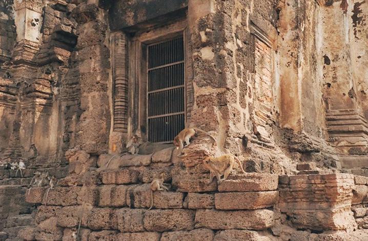 华富里(Lop Buri),这里除了猴子还有历史斑驳的印记