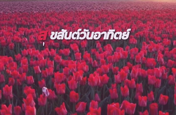 泰国的颜色文化
