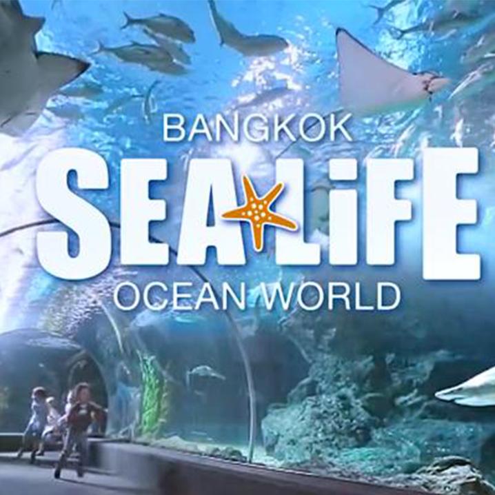 曼谷暹罗海洋世界Sea Life Bangkok Ocean World